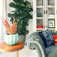 "Pebble Hill Design & Creative on Instagram: ""Sunny corner... #interiordesign #interiordesigner #interiordecorating #homedesign #interiors #pebblehilldesign"""