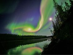 Aurora Borealis along the Earth's northern latitudes.OR,The sun exploded and it made pretty colors in the sky (yay)!!!