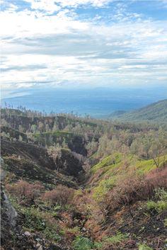 Ijen Crater https://surgatraveller.wordpress.com/2015/01/20/pesona-keindahan-alam-kawah-ijen/
