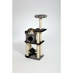 Midwest Homes For Pets Feline Nuvo Avalon Cat Furniture in Black | Wayfair