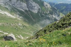 Mt. Pilatus, Lucerne, Switzerland. One of the most beautiful places I've ever been.
