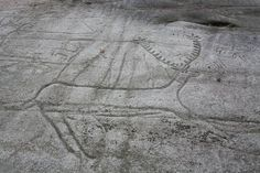 PARQUE ARQUEOLOGICO DE ARTE RUPESTRE (Campo Lameiro, Pontevedra) - Uno de los más destacados conjuntos de arte rupestre al aire libre del continente europeo