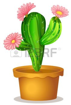 Illustration of a cactus plant with pink flowers on a white background Stock…
