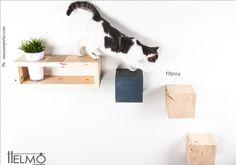 FITZROY -Set modulare attrezzato per gatti by HelmoDesign on Etsy https://www.etsy.com/listing/240967379/fitzroy-set-modulare-attrezzato-per