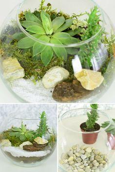 DIY: jak posadzić rośliny w szkle? Dowiedz się, jak samodzielnie przygotować taką oryginalną dekorację!