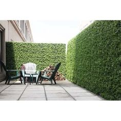 e-joy 24 Piece Artificial Topiary Hedge Plant Privacy Fence Screen Greenery Panels Suitable for Both Outdoor or Indoor, Garden or Backyard and Home Decorations, Boxwood L x H - Outdoor Privacy, Backyard Privacy, Backyard Fences, Front Yard Landscaping, Balcony Privacy, Landscaping Ideas, Artificial Hedges, Artificial Topiary, Artificial Plants