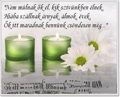 Candle Jars, Candles, About Me Blog, Tea Lights, Google, Searching, Tea Light Candles, Candy, Candle Sticks