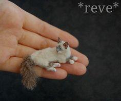 OOAK Realistic Miniature ~ Birman Cat ~ Handmade Dollhouse 1:12 Sculpture