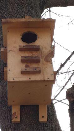 handmade squirrel and bird feeder garten pinterest eichh rnchen v gel und eichh rnchen. Black Bedroom Furniture Sets. Home Design Ideas