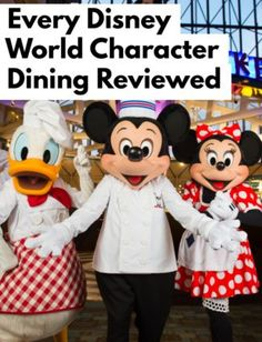 Every Character Dining Disney World 2021 Experience Reviewed