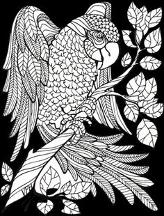 Adult Coloring Book 29 Animal Designs For Stress Relief Unibul Press Books
