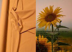 Splendido tessuto bistretch di un bellissimo color tabacco con riflessi dorati, ottima vestibilità, tessuto particolarmente adatto per la stagione estiva, ideale per pantaloni, gonne, giacche e abiti per donna, uomo o bambino, tessuto pronto per la sartoria su misura, altezza del tessuto: 140 cm, composizione: 58 % Poliammide (Nylon) + 31 % Viscosa + 11 % Elastan. INVIO CAMPIONE GRATUITO (richiedere per email)