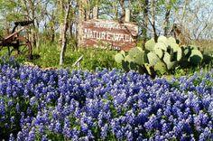 Tuscola, Texas