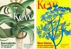 Posters also include radical reworkings of botanical illustrations from Kew's archive