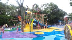 Singapore Zoo has a kidz zone that includes this great little water park for them to cool off in the Singapore heat. Singapore With Kids, Singapore Zoo, Playground, Fair Grounds, Explore, Park, Cool Stuff, Water, Fun