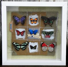 Shadow box, sewn grid for background, paper butterflies, nice use of tab