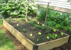 44 Best Front Yard Veggie Gardens Images Potager Garden Edible