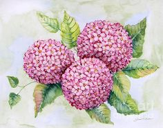 Check out this new painting that I uploaded to plout-gallery.pixels.com! http://plout-gallery.pixels.com/featured/hydrangeas-jp3880-jean-plout.html