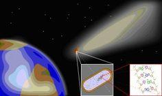 """Pánspermia """"Pánspermia (görög πάς/πάν (pas/pan, összes/mind) σπέρμα (sperma, mag)) egy hipotézis, miszerint az élet """"magjai"""" jelen vannak mindenhol az Univerzumban és a földi élet is ilyen magvakból jöhetett létre, valamint ugyanígy más lakható bolygók is megtermékenyülhettek"""" Idézet: Wikipédiából"""