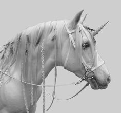 unicorn-2.jpg (500×467)