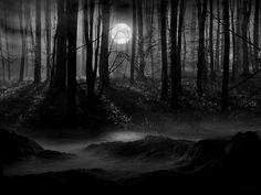 Moon Scenery Backgrounds   Dark Forest Moon Wallpaper