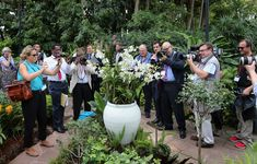 OPhotographers photograph an orchid named in honour of Diana, Princess of Wales at Singapore Botanical Gardens ahead of a visit by Prince William, Duke of Cambridge and Catherine, Duchess of Cambridge on day 1 of their Diamond Jubilee tour on September 11, 2012 in Singapore. Prince William, Duke of Cambridge and Catherine, Duchess of Cambridge are on a Diamond Jubilee Tour of the Far East taking in Singapore, Malaysia, the Solomon Islands and the tiny Pacific Island of Tuvalu.