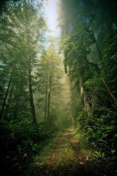Este sendero es tan recóndito que ni registra dónde queda.