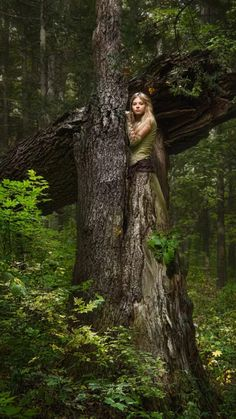 elf ears: Blond girl in a magic forest Stock Photo Fantasy Forest, Magic Forest, Fantasy Girl, Stock Pictures, Stock Photos, Blond, Forest Pictures, Witch Pictures, Elf Ears