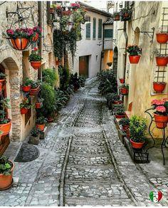 Spello (comuna italiana), região da Umbria, província de Perugia, Itália