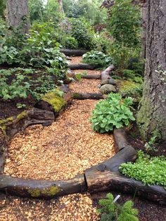 Path from chips and recycled logs from the property