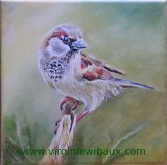 Peinture animalière à l'huile. D'autres exemples sur : www.virginiewibaux.com
