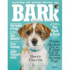 The BARK Magazine - Dog owners BEWARE! Bark magazine is dedicated to everything related to canine culture. Each issue includes stories, essays, poetry, reviews, interviews and artwork related to the relationship between humans and dogs. $14.00 Editorial Layout, Editorial Design, Magazine Stand, Diy Pet, Animal Magazines, Army Dogs, Magazine Cover Design, Magazine Covers, Design Websites