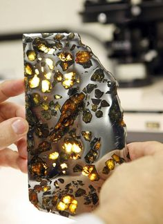 A meteorite found in Chubut, Argentina, featuring a metallic mirror finish and peridot-type stones, is displayed in a collections room at the Field Museum in Chicago.