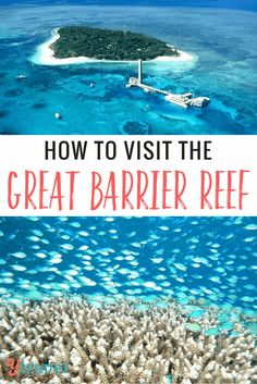 How to visit the Great Barrier Reef - Tours from Cairns
