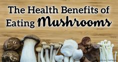 Nine mushroom studies highlight the health benefits of eating mushrooms, which includes improving nutrition and immune system function. http://articles.mercola.com/sites/articles/archive/2013/05/13/mushroom-benefits.aspx