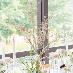 Craft eye-catching and rustic birch tree wedding centerpieces with an artificial birch tree centerpiece from The Knot Shop. Tree Wedding Centerpieces, Branch Centerpieces, Centerpiece Decorations, Decoration Table, Wedding Reception Decorations, Wedding Ideas, Wedding Stuff, Wedding Tables, Wedding Advice