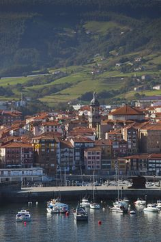 Bermeo, Viscaya,  Basque Country  The home of my Paternal Grandfather