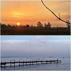 Moin vom Meer zum Jahresendspurt. Sonnenaufgang und Steg mit Möwen am Meer geht immer. Da ist alles gut.  #wasmitsport  #sunrise #steinhude #steinhudermeer  #runkeeper #5k  #nature #sky #sun #cloudporn #weather #photooftheday #skylovers #weather #mothernature #fogporn #foggymorning #ausserhalbderzeit #kormoran #moewe #fuermehrauszeit