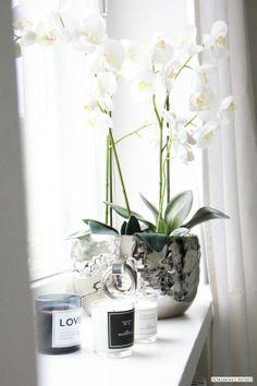 Window Sill Deco – Stylish decoration ideas for the windowsill windowsill deko white silver combination plants Home Decor Accessories, Decorative Accessories, Window Sill Decor, Bedroom Windows, White Orchids, Silk Orchids, Home And Deco, Decoration Table, Interior Styling