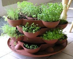 Lots of good  info about growing an herb garden in pots