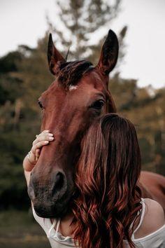 Cute Horses, Pretty Horses, Horse Love, Beautiful Horses, Cute Horse Pictures, Horse Senior Pictures, Horse Photos, Horse Girl Photography, Equine Photography