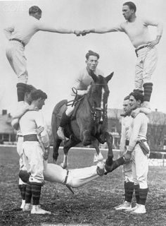 Horse Jumps Through Human Arch - Original caption: Fort Myer, VA- This is no job for a man with a weak heart. However, these daring cavalrymen attached to Fort Myer, Virginia, near Washington, seem not the least bit concerned as they form this human arch for St. McGuire and his steed to leap through.
