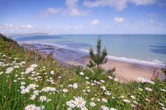 Luccombe, Isle of Wight UK