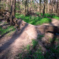 Center Trails. Des Moines, IA