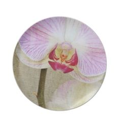 Beautiful Orchid Flower Plate