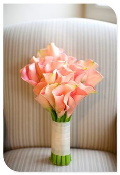 Leicht orange Calla Blumen