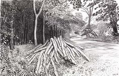 DAVID HOCKNEY Cut Trees - Timber , 2008  charcoal on paper, 26 x 40 in.