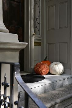 Pumpkins and gourds are simply amazing.  www.wisteriaandrose.com
