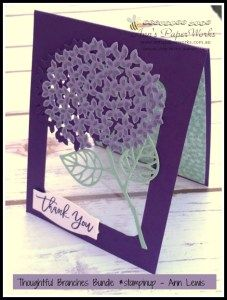 Thoughtful Branches Bundle Limited Edition from Stampin' Up!, only available during August,  Ann's PaperWorks| Ann Lewis| Stampin' Up! (Aus) available from online store 24/7
