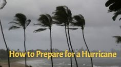 National Severe Weather Preparedness Week: How to Prepare for a Hurricane